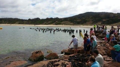 Athlete Race Report Coles Bay Long Course
