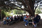 Queenscliff-Triathlon-Camp